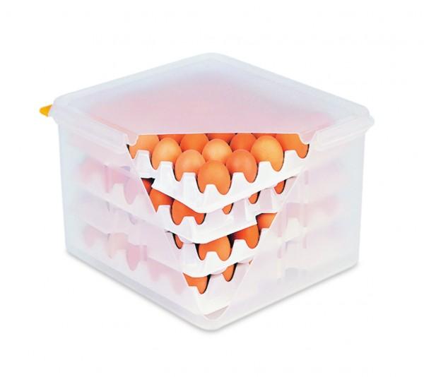 HACCP Eierbox